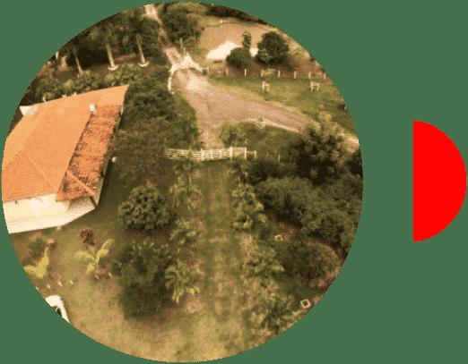 Cultivo de café en Minas Gerais Brasil