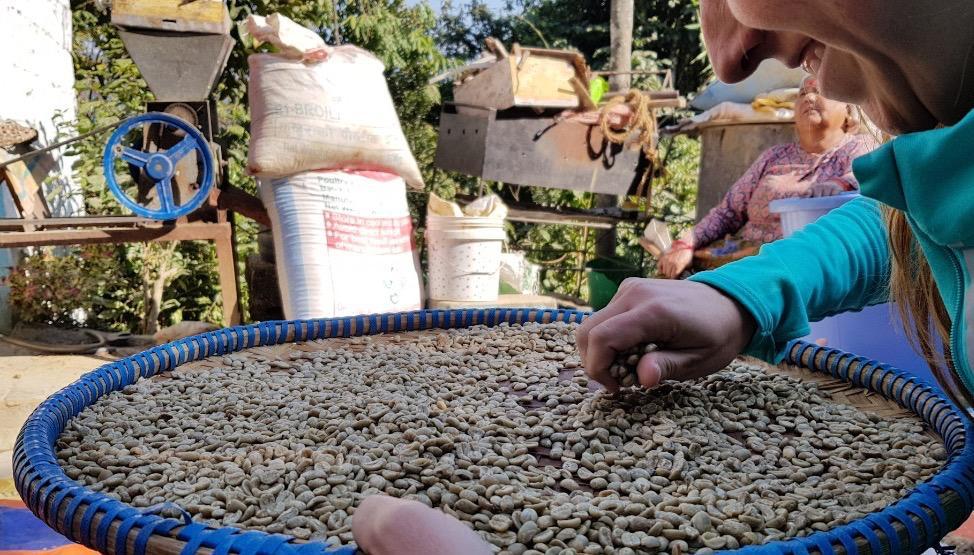 Beatriz y los granos de café