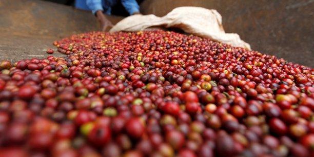 Cerezas-Burundi